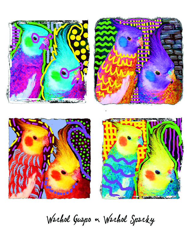 Warhol for Katy and John birds 800 pix site