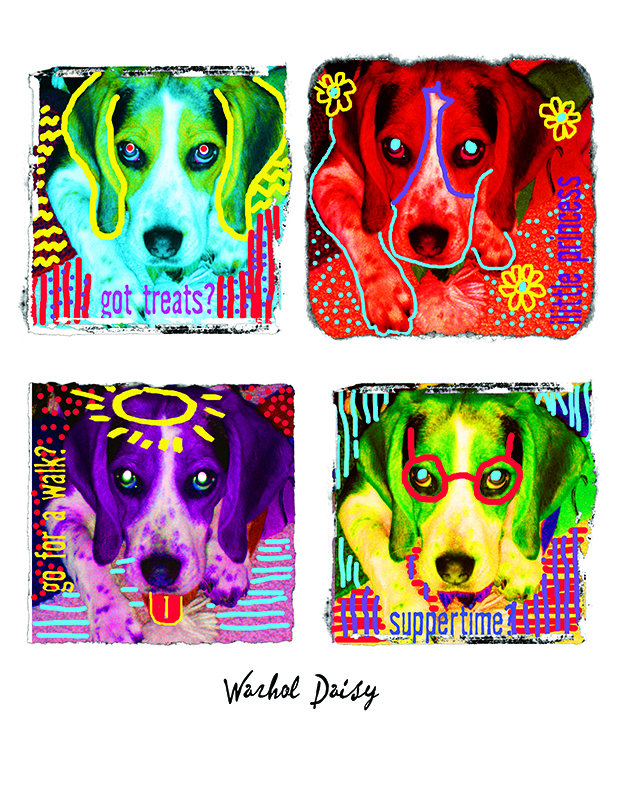 warhol daisy wait 800 px site